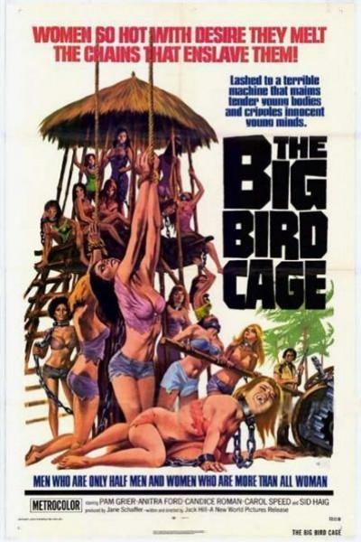 Caratula, cartel, poster o portada de The Big Bird Cage