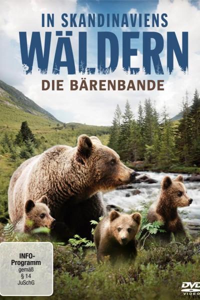 Caratula, cartel, poster o portada de Una hermandad de osos: En los bosques de Escandinavia