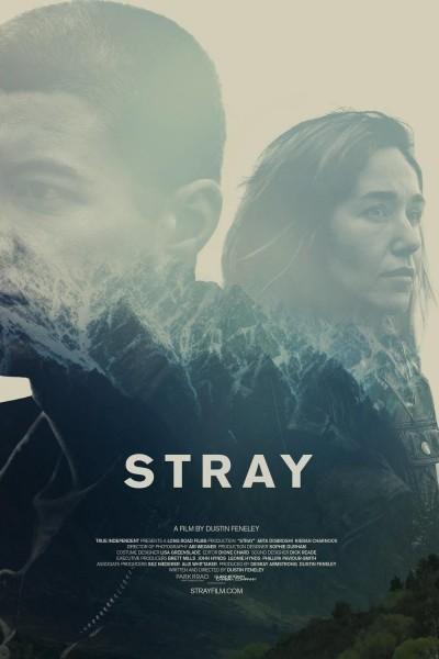 Caratula, cartel, poster o portada de Stray