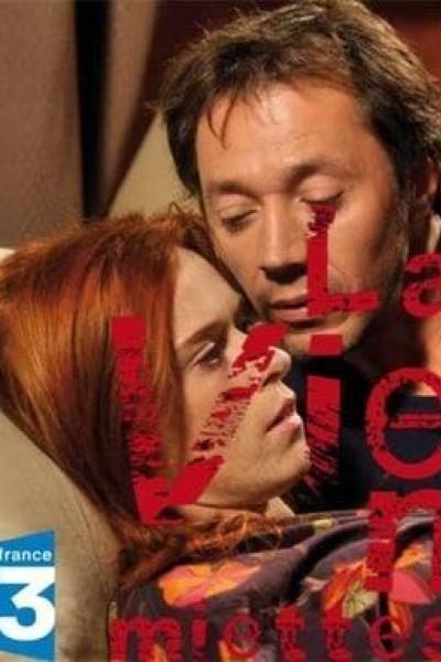 Caratula, cartel, poster o portada de La vie en miettes