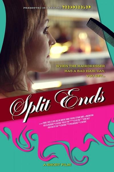 Caratula, cartel, poster o portada de Split Ends