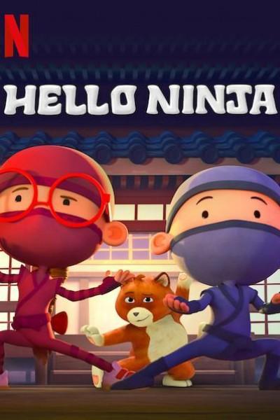 Caratula, cartel, poster o portada de Hello Ninja