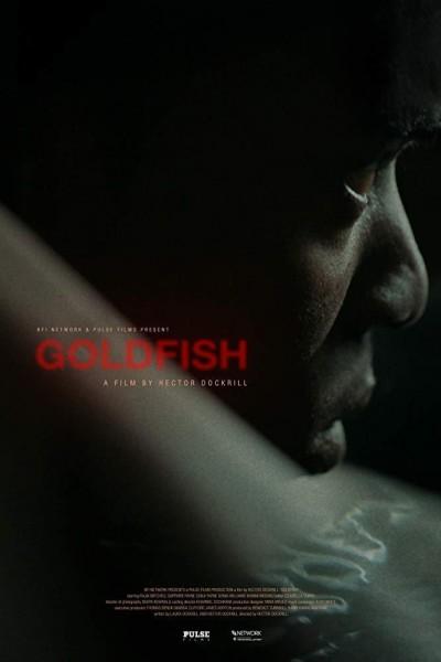 Caratula, cartel, poster o portada de Goldfish