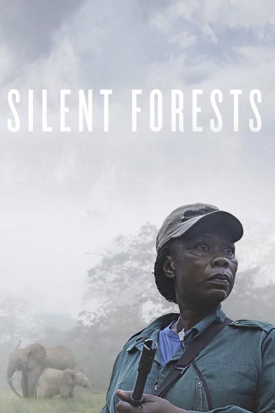 Caratula, cartel, poster o portada de Silent Forests