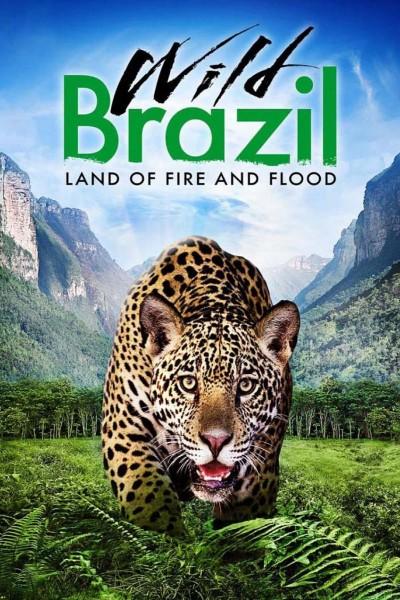 Caratula, cartel, poster o portada de Brasil salvaje