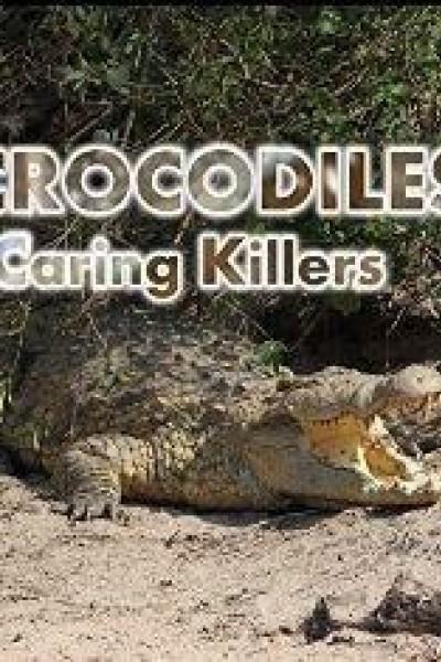Caratula, cartel, poster o portada de Cocodrilos, unos tiernos asesinos