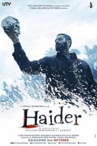 Caratula, cartel, poster o portada de Haider