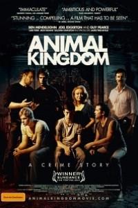 Caratula, cartel, poster o portada de Animal Kingdom