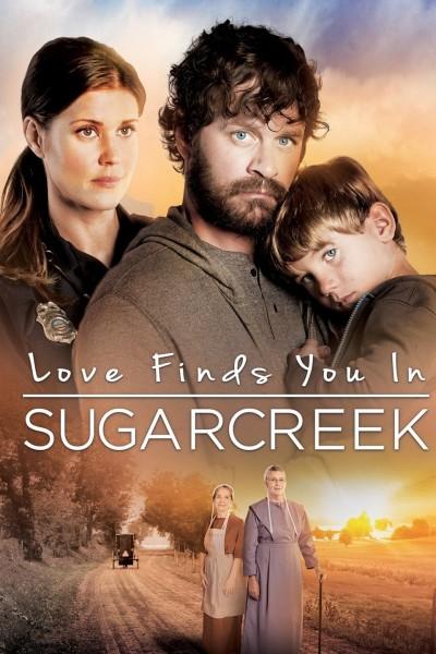 Caratula, cartel, poster o portada de Un extraño en Sugarcreek