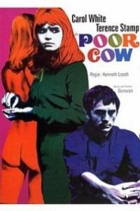 Caratula, cartel, poster o portada de Pobre vaca