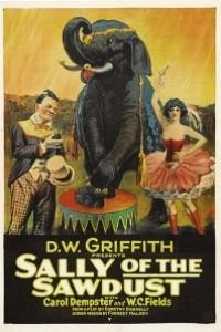 Caratula, cartel, poster o portada de Sally, la hija del Circo