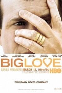 Caratula, cartel, poster o portada de Big Love