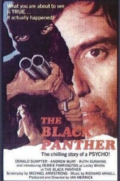 Caratula, cartel, poster o portada de The Black Panther
