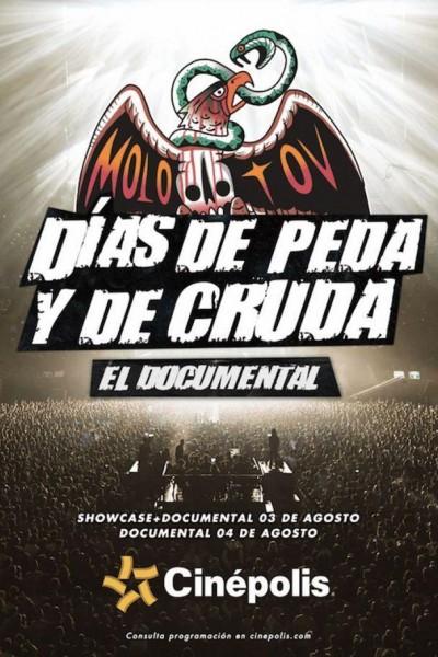 Caratula, cartel, poster o portada de Molotov 20 años: Días de peda y de cruda
