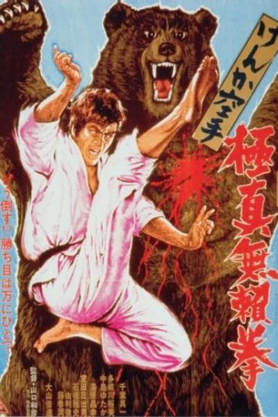 Caratula, cartel, poster o portada de Karate Bear Fighter