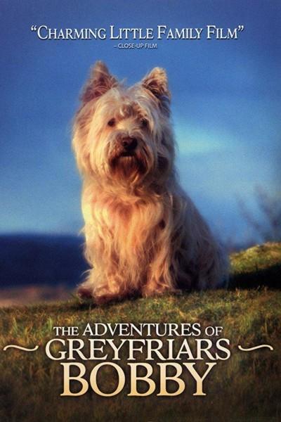 Caratula, cartel, poster o portada de The Adventures of Greyfriars Bobby