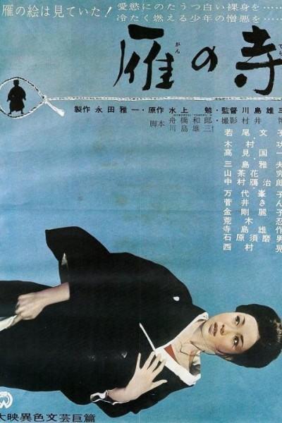 Caratula, cartel, poster o portada de Temple of the Wild Geese