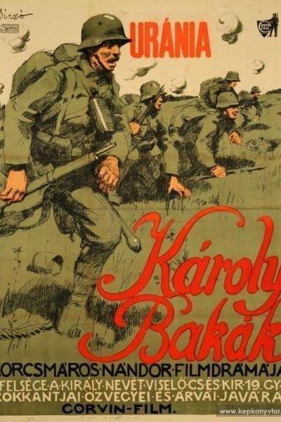 Caratula, cartel, poster o portada de Károly bakák