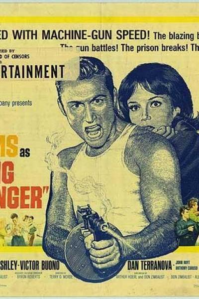 Caratula, cartel, poster o portada de Young Dillinger