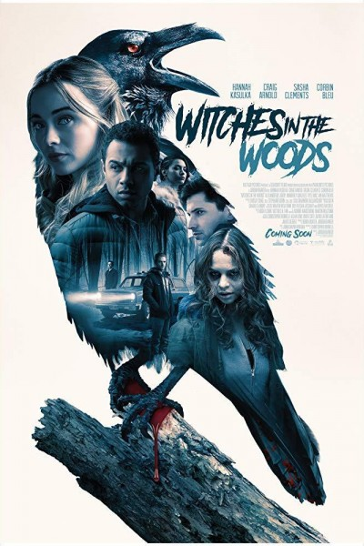 Caratula, cartel, poster o portada de Witches in the Woods