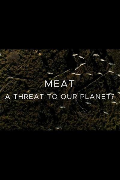 Caratula, cartel, poster o portada de Carne: ¿una amenaza para el planeta?