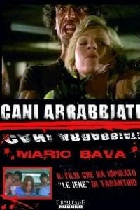 Caratula, cartel, poster o portada de Semáforo rojo (Cani arrabbiati)