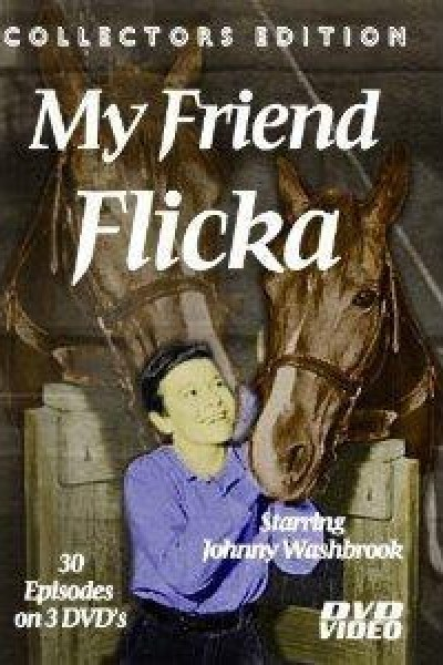 Caratula, cartel, poster o portada de Mi amiga Flicka
