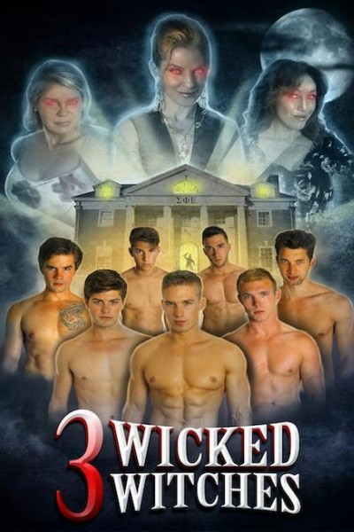 Caratula, cartel, poster o portada de 3 Wicked Witches