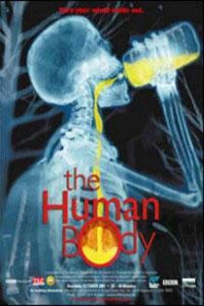 Caratula, cartel, poster o portada de El cuerpo humano
