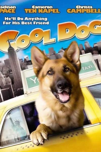 Caratula, cartel, poster o portada de Cool Dog