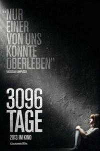 Caratula, cartel, poster o portada de 3096 días