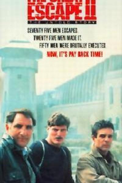 Caratula, cartel, poster o portada de La gran evasión II: La historia jamás contada