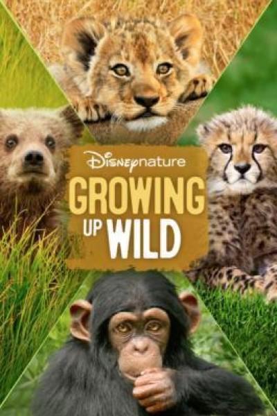 Caratula, cartel, poster o portada de Crecer en la naturaleza