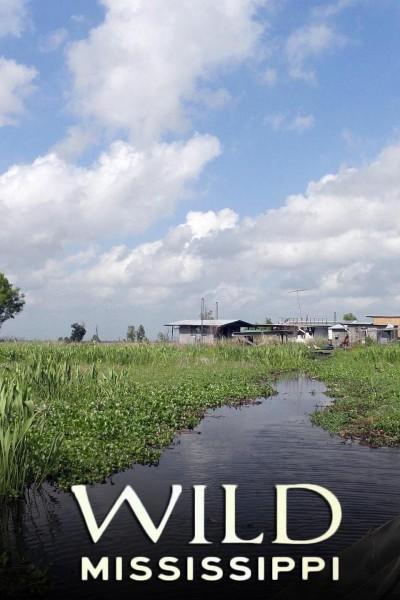 Caratula, cartel, poster o portada de Wild Mississippi