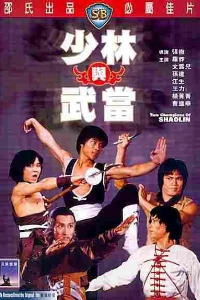 Caratula, cartel, poster o portada de Los dos campeones del Shaolin