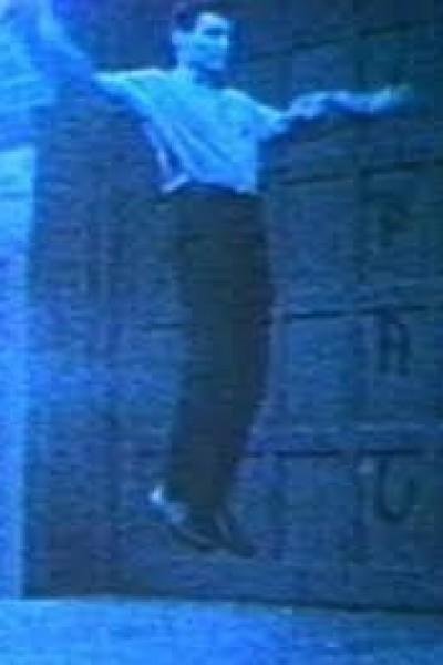 Caratula, cartel, poster o portada de Vincent Gallo as Flying Christ