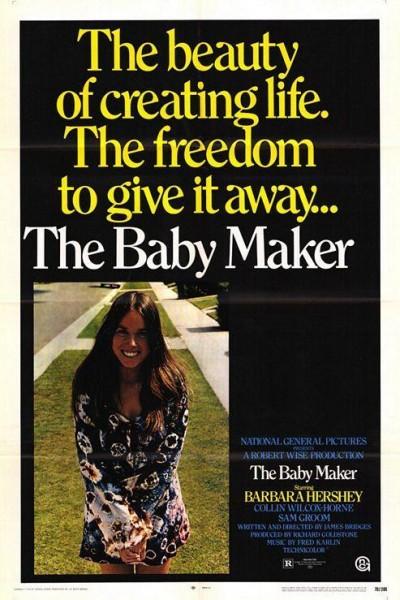 Caratula, cartel, poster o portada de Un bebé para mi esposa
