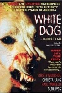 Caratula, cartel, poster o portada de Perro blanco