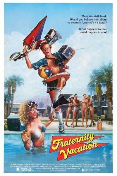 Caratula, cartel, poster o portada de Vacaciones locas, locas, locas