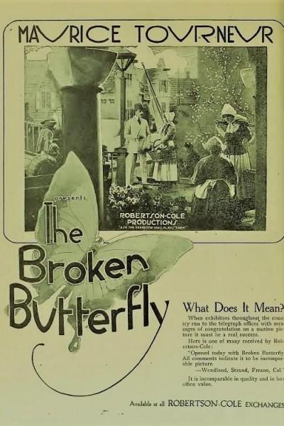 Caratula, cartel, poster o portada de The Broken Butterfly