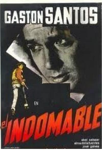 Caratula, cartel, poster o portada de El indomable
