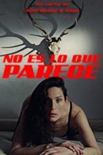 Caratula, cartel, poster o portada de No es lo que parece