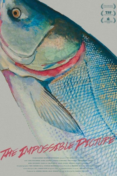 Caratula, cartel, poster o portada de The Impossible Picture