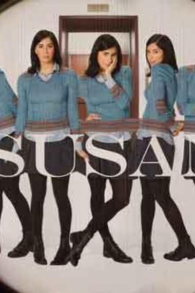 Caratula, cartel, poster o portada de Susan 313