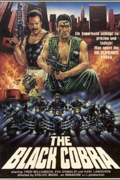 Caratula, cartel, poster o portada de Black Cobra