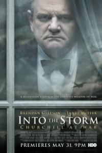 Caratula, cartel, poster o portada de Into The Storm (Durante la tormenta)