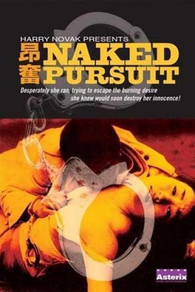 Caratula, cartel, poster o portada de Naked Pursuit