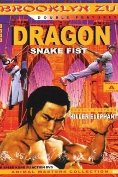 Caratula, cartel, poster o portada de The Dragon\'s Snake Fist