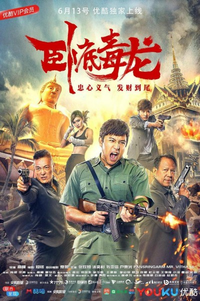 Caratula, cartel, poster o portada de Undercover Dragon