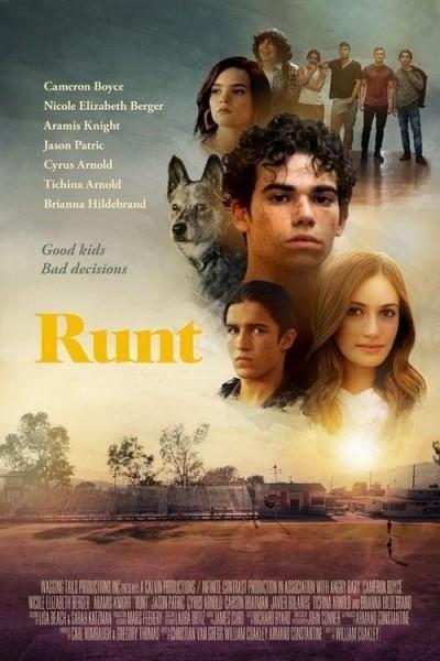 Caratula, cartel, poster o portada de Runt